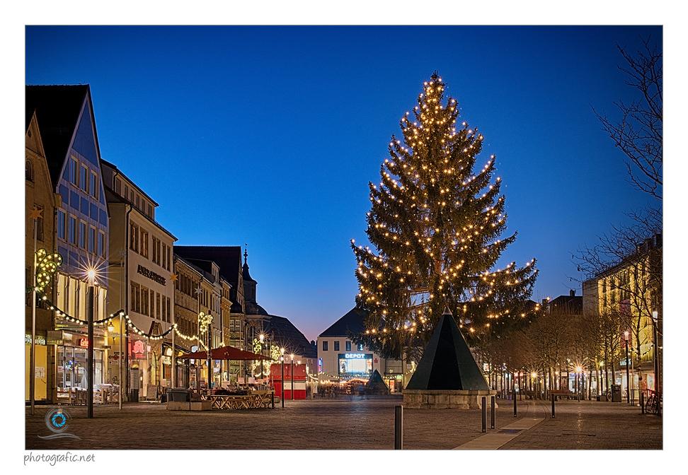 Bayreuth | Der Weihnachtsbaum