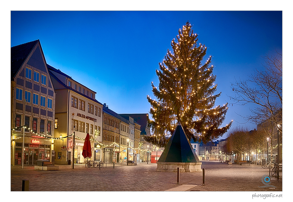Bayreuth | Weihnachtsbaum II