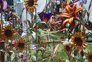 Metal Flowers by Tom Priestley