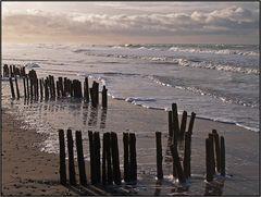 | beach barrier 2 |