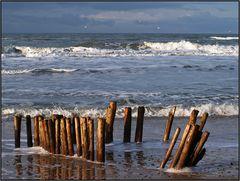 | beach barrier 3 |