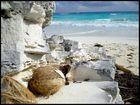 Beach - Cayo Largo Del Sur -