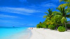 Beach life....