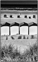 Beach North Holland