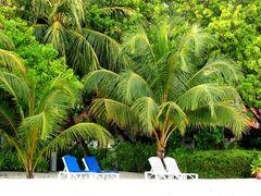 Beachvilla mit Garten und Strand, Kanifinolhu, Nordmale Atoll, Malediven