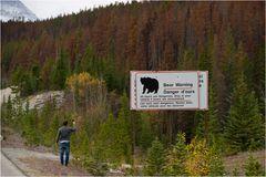 Bear Warning...