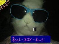 Beatboxbasti
