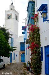Beauté de Sidi Bou Said (1)