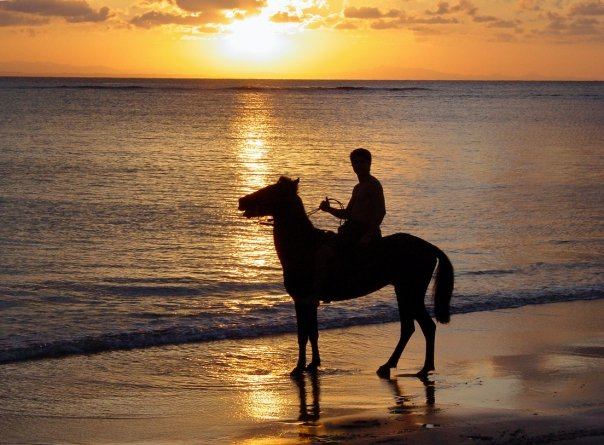 beauté du sunset