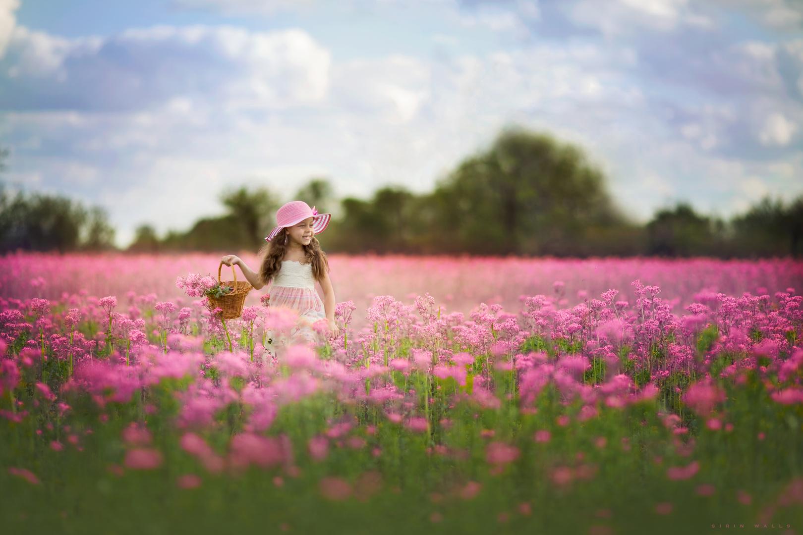 Beautiful in Pink ....