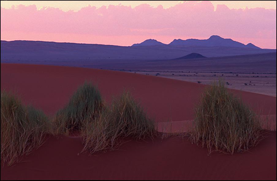 bebüschelte Pastelllandschaft