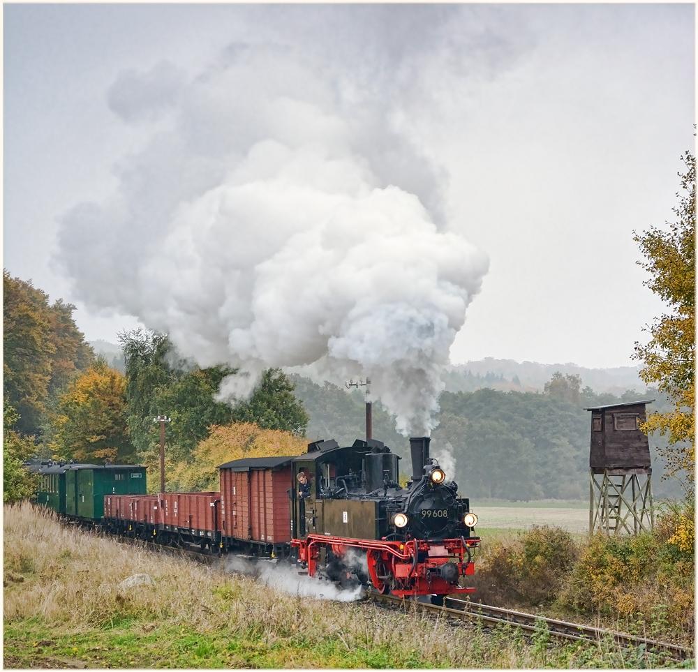 Bedeckte Herbstwetterlage auf Rügen