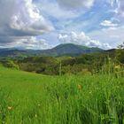 Bedonia, alta valle del Taro-Tornolo e Monte Zuccone