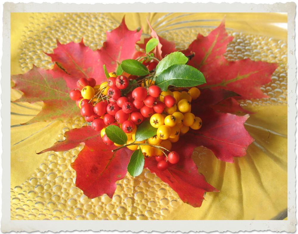 Beeren & Blätter