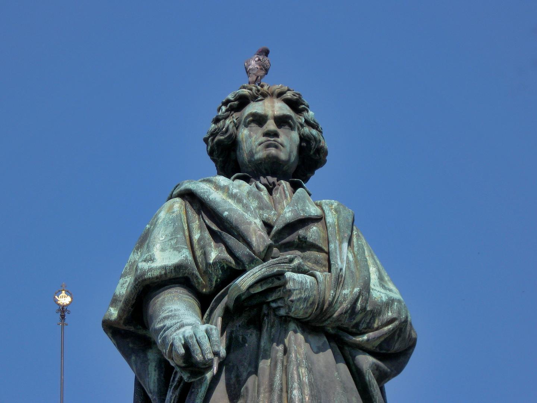Beethoven und seine Tauben...