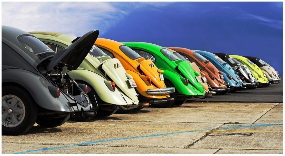 Beetle-Colorama.