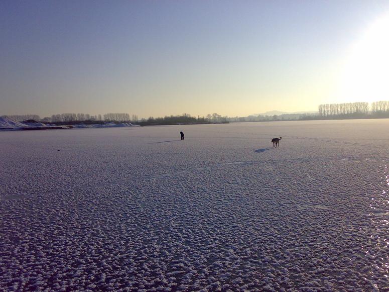 Begegnung auf dem Eis