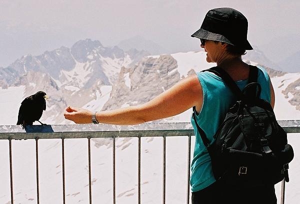 Begegnung auf der Zugspitze