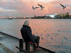 Begegnung einer besonderen Art - Hamburg
