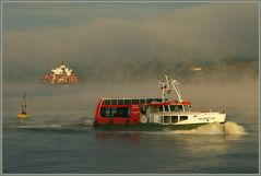 Begegnung im Nebel - Encounter in the fog