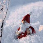 Begegnung im Schnee...