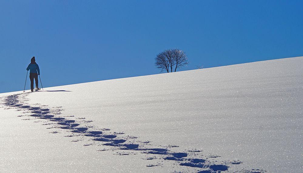 Begegnung in Schneeschuhen