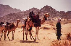 Begegnungen 1, Algerien 2002