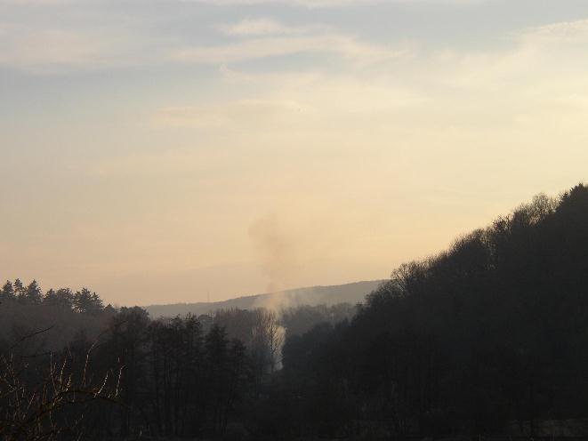 Beginnender Waldbrand