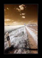 Begrenzungspfahl am Feldweg?! (2)