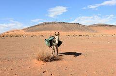 Begrüßung in der Wüstenregion bei Tafraout Hassi Fougeni
