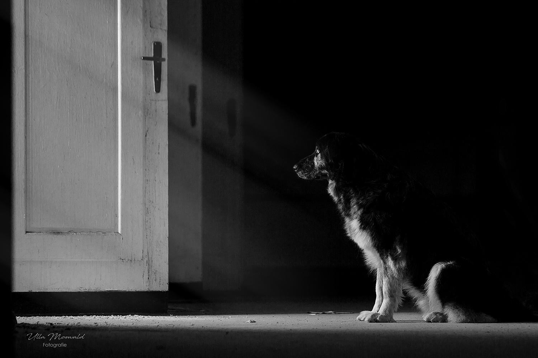 ...behind the door...