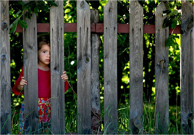 behind the fence