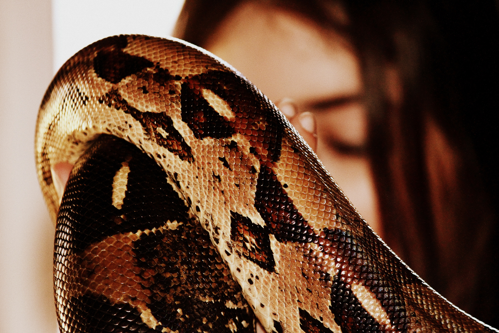 Behind the snake