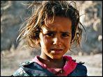 bei den beduinen II