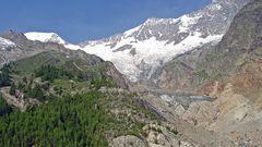 Bei der Alpenpflanzenzusammenstellung gefunden und völlig neu bearbeitet...