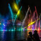 Bei der Wassershow / BUGA Heilbronn