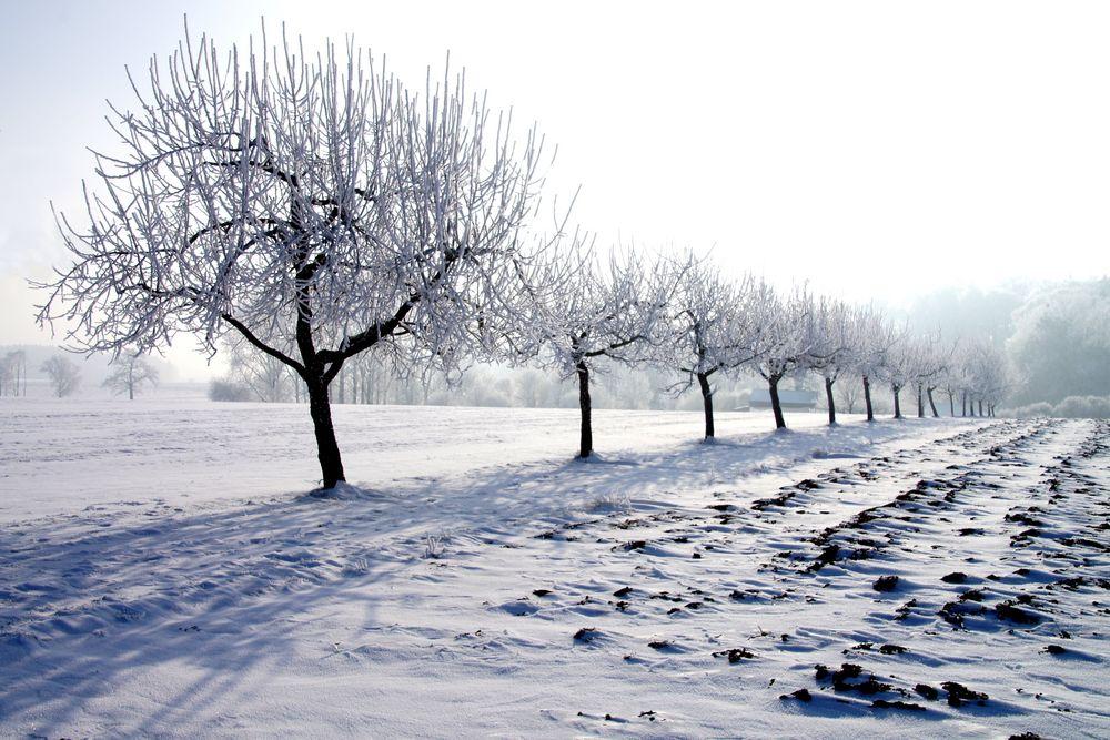 Bei eisiger Kälte