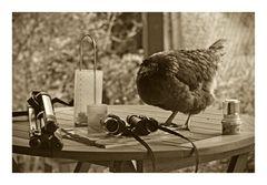 bei mir kommt öfter mal hühnchen auf den tisch
