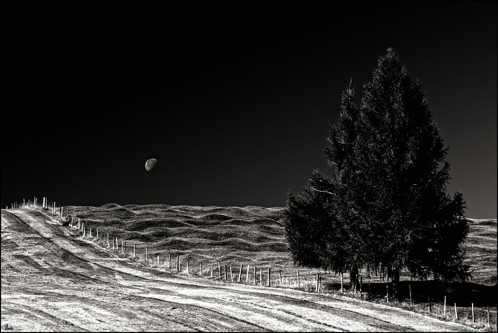 Bei Mondschein...