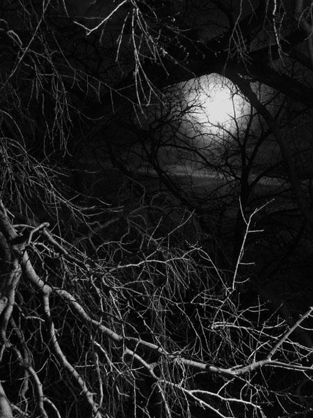 Bei Nacht