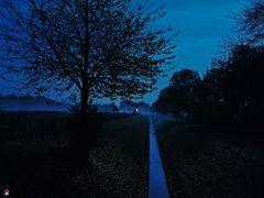 Bei Nacht und Nebel...