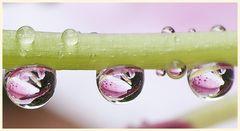 bei regen