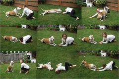 Bei uns jeden Tag ein Hunde Tag - Synchron Spielen