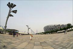Beijing - Nid d'oiseau I