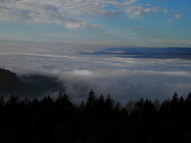 Beim Eindunkeln mit Blick auf den Schwarzwald