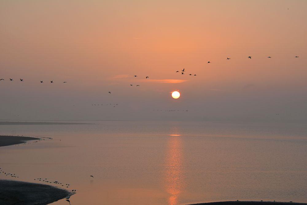 beim Sonnenaufgang...