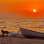 beim Sonnenaufgang am Møllestenen Beach ist man selten allein