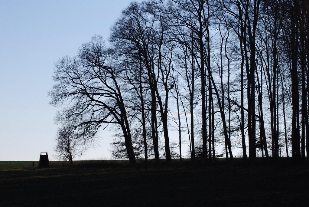 Beinhardshof
