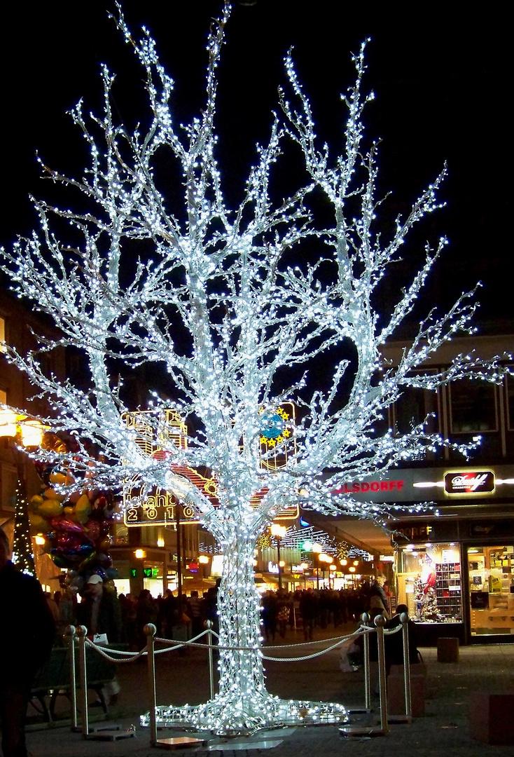 Beleuchtete Bilder Weihnachten.Beleuchteter Baum Foto Bild Gratulation Und Feiertage