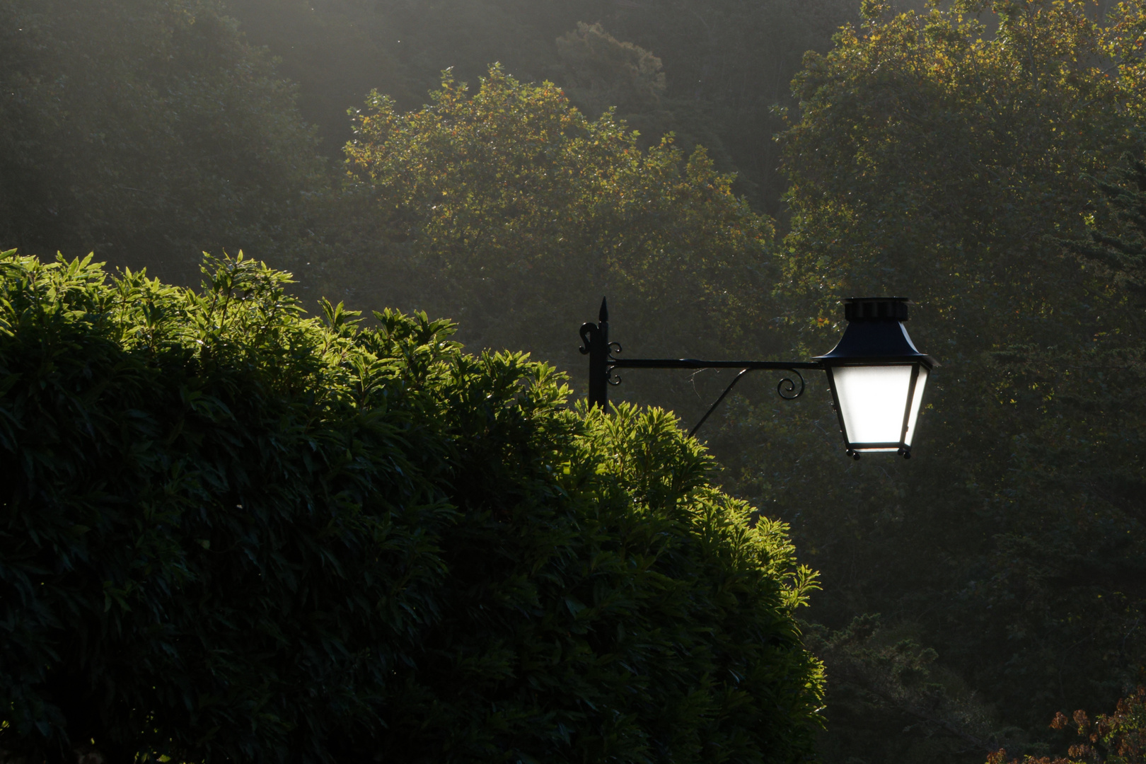 Beleuchtung 1
